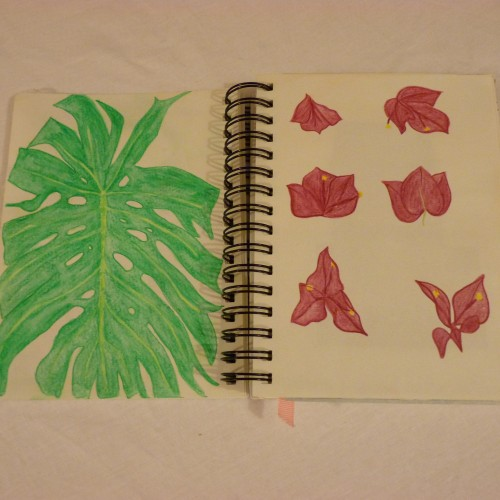 Watercolour pencil drawings of leaf and flowers