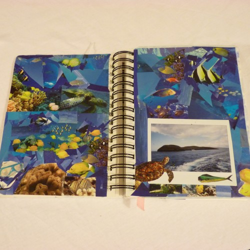 Fish collage inspired by snorkelling trip to Molokini