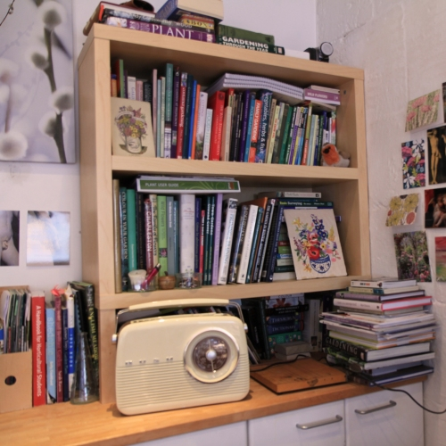 Radio and book shelf